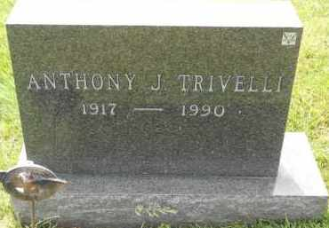 TRIVELLI, ANTHONY J - Portage County, Ohio | ANTHONY J TRIVELLI - Ohio Gravestone Photos