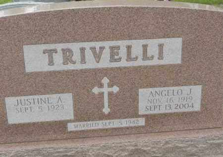 TRIVELLI, ANGELO J - Portage County, Ohio | ANGELO J TRIVELLI - Ohio Gravestone Photos