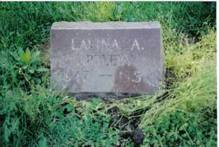 APPLEBY, LAVINA A. - Preble County, Ohio | LAVINA A. APPLEBY - Ohio Gravestone Photos