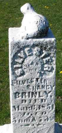 BRINLEY/BRINLY, SILVESTER - Preble County, Ohio | SILVESTER BRINLEY/BRINLY - Ohio Gravestone Photos