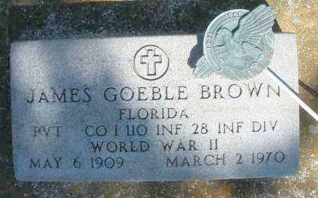 BROWN, JAMES GOEBLE - Preble County, Ohio | JAMES GOEBLE BROWN - Ohio Gravestone Photos