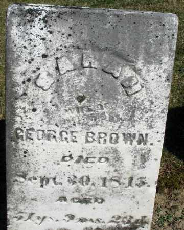 BROWN, SARAH - Preble County, Ohio | SARAH BROWN - Ohio Gravestone Photos