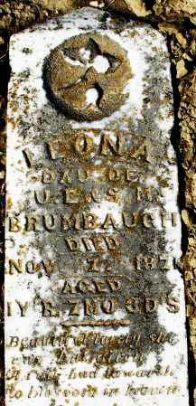 BRUMBAUGH, LEONA - Preble County, Ohio | LEONA BRUMBAUGH - Ohio Gravestone Photos