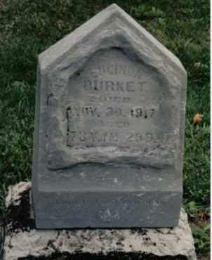 BURKET, LUCINDA - Preble County, Ohio | LUCINDA BURKET - Ohio Gravestone Photos
