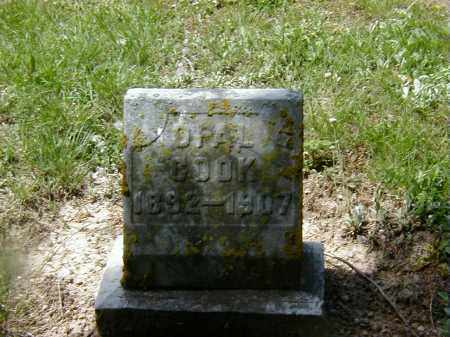 COOK, OPAL - Preble County, Ohio | OPAL COOK - Ohio Gravestone Photos