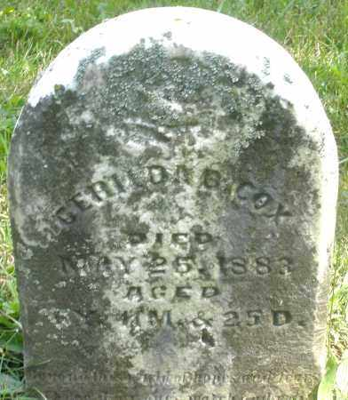 COX, GERILDAB ? - Preble County, Ohio | GERILDAB ? COX - Ohio Gravestone Photos