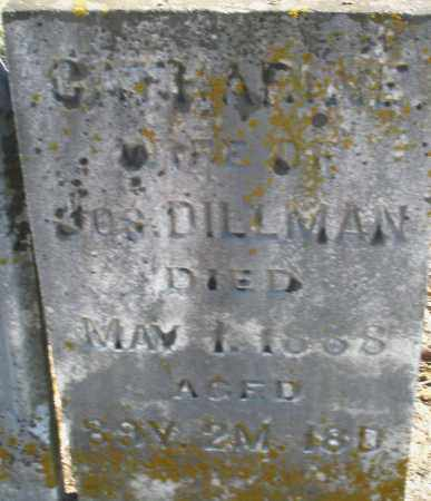 DILLMAN, CATHARINE - Preble County, Ohio | CATHARINE DILLMAN - Ohio Gravestone Photos