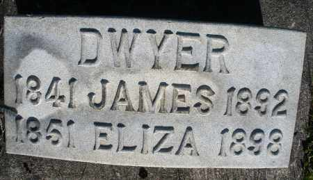DWYER, ELIZABETH - Preble County, Ohio | ELIZABETH DWYER - Ohio Gravestone Photos