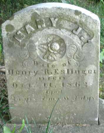 ESLINGER ?, MARY J. - Preble County, Ohio | MARY J. ESLINGER ? - Ohio Gravestone Photos