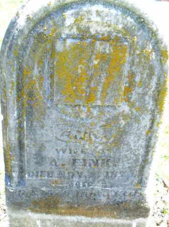 FINK, ANN - Preble County, Ohio   ANN FINK - Ohio Gravestone Photos