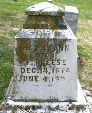 FREESE, BETSY ANN - Preble County, Ohio | BETSY ANN FREESE - Ohio Gravestone Photos