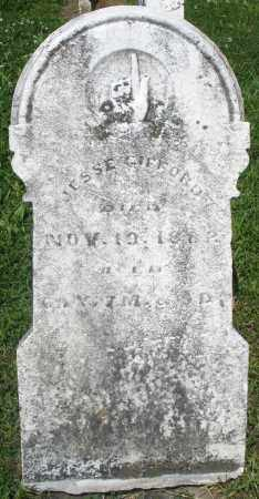 GIFFORD, JESSE - Preble County, Ohio | JESSE GIFFORD - Ohio Gravestone Photos