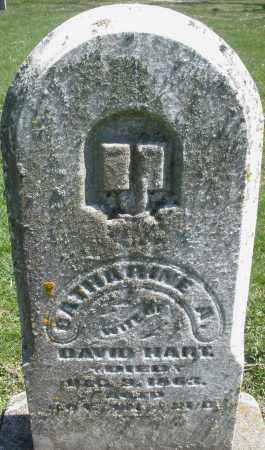 HART, CATHARINE A. - Preble County, Ohio | CATHARINE A. HART - Ohio Gravestone Photos
