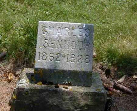 ISENHOUR, CHARLES - Preble County, Ohio | CHARLES ISENHOUR - Ohio Gravestone Photos