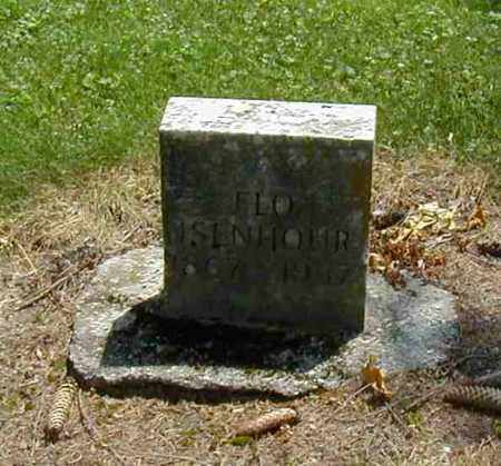 ISENHOUR, FLO - Preble County, Ohio | FLO ISENHOUR - Ohio Gravestone Photos