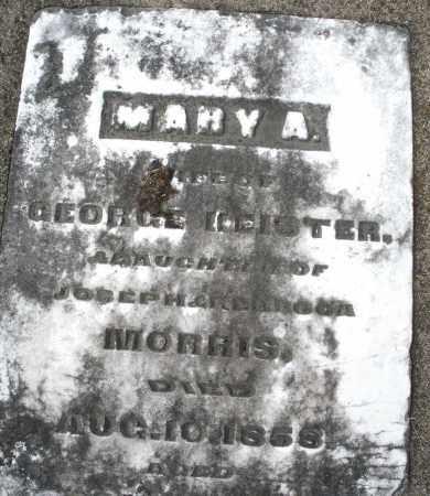 KEISTER, MARY A. - Preble County, Ohio | MARY A. KEISTER - Ohio Gravestone Photos