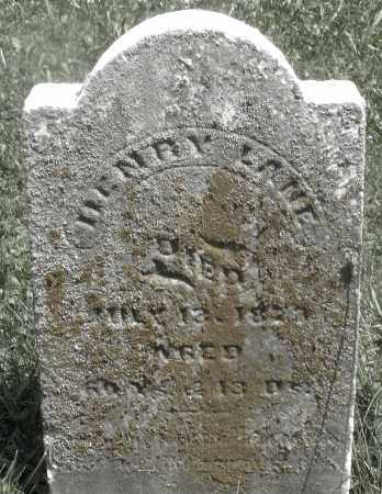 LANE, HENRY - Preble County, Ohio | HENRY LANE - Ohio Gravestone Photos