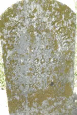 LONG, CARRIE - Preble County, Ohio | CARRIE LONG - Ohio Gravestone Photos