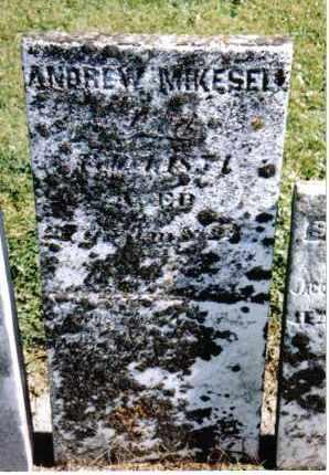 MIKESELL, ANDREW - Preble County, Ohio | ANDREW MIKESELL - Ohio Gravestone Photos