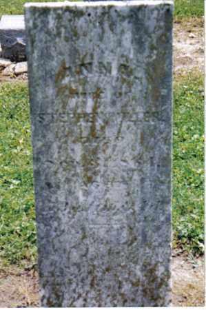 MILLER, ANNA - Preble County, Ohio | ANNA MILLER - Ohio Gravestone Photos