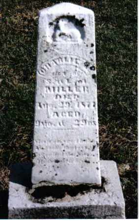 MILLER, CHARLIE M. - Preble County, Ohio | CHARLIE M. MILLER - Ohio Gravestone Photos
