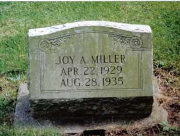 MILLER, JOY A. - Preble County, Ohio | JOY A. MILLER - Ohio Gravestone Photos