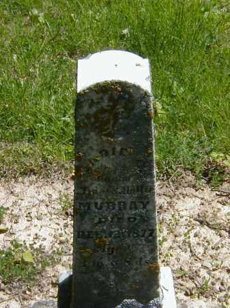 MURRAY, SADIE C. - Preble County, Ohio | SADIE C. MURRAY - Ohio Gravestone Photos
