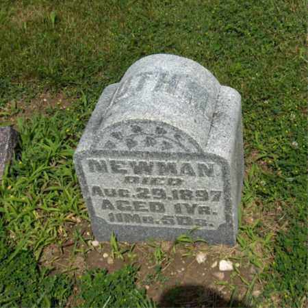 NEWMAN, RUTH - Preble County, Ohio | RUTH NEWMAN - Ohio Gravestone Photos
