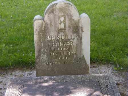 PARKER, PRISCILLA - Preble County, Ohio | PRISCILLA PARKER - Ohio Gravestone Photos