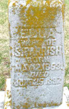 PARRISH, ELLA - Preble County, Ohio | ELLA PARRISH - Ohio Gravestone Photos