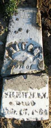 SHEWMAN, ALIEH ? - Preble County, Ohio | ALIEH ? SHEWMAN - Ohio Gravestone Photos