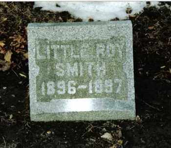 SMITH, LITTLE ROY - Preble County, Ohio | LITTLE ROY SMITH - Ohio Gravestone Photos