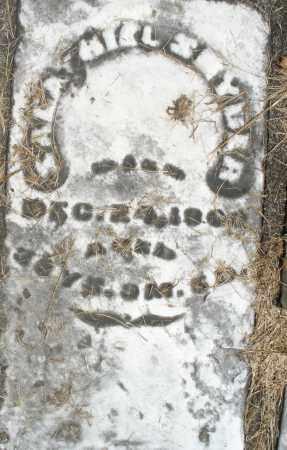 SNYDER, SALATHIEL ? - Preble County, Ohio | SALATHIEL ? SNYDER - Ohio Gravestone Photos