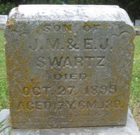 SWARTZ, JESSE - Preble County, Ohio | JESSE SWARTZ - Ohio Gravestone Photos