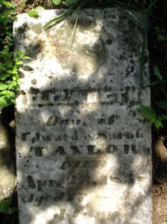 TAYLOR, ELIZABETH - Preble County, Ohio | ELIZABETH TAYLOR - Ohio Gravestone Photos
