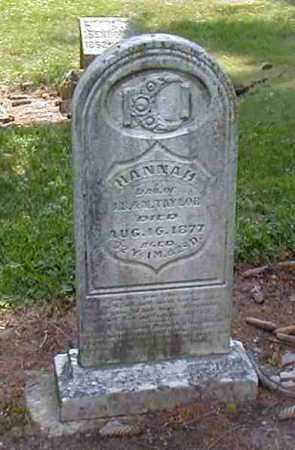 TAYLOR, HANNAH - Preble County, Ohio | HANNAH TAYLOR - Ohio Gravestone Photos