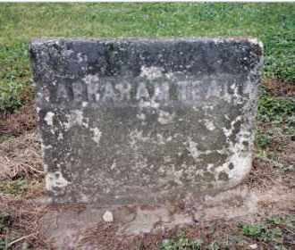 TEAL, ABRAHAM - Preble County, Ohio | ABRAHAM TEAL - Ohio Gravestone Photos