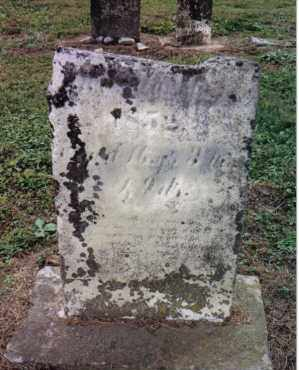 TEAL, SALLY - Preble County, Ohio | SALLY TEAL - Ohio Gravestone Photos