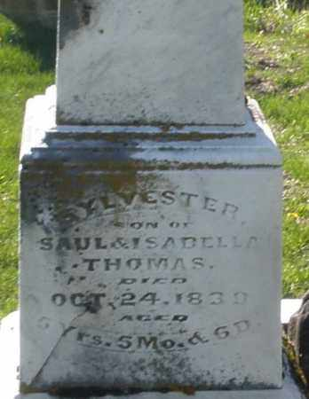 THOMAS, SYLVESTER - Preble County, Ohio | SYLVESTER THOMAS - Ohio Gravestone Photos