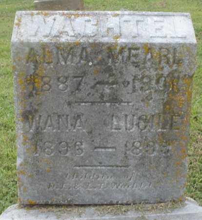 WACHTEL, ALMA MEARL - Preble County, Ohio | ALMA MEARL WACHTEL - Ohio Gravestone Photos