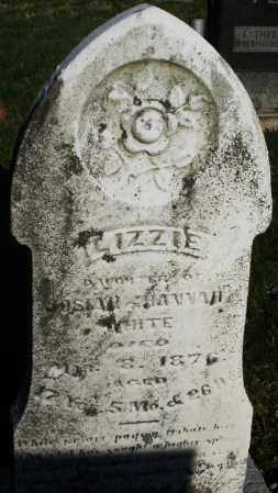 WHITE, LIZZIE - Preble County, Ohio | LIZZIE WHITE - Ohio Gravestone Photos