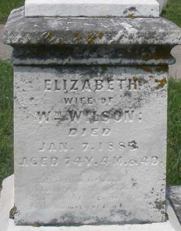 WILSON, ELIZABETH - Preble County, Ohio | ELIZABETH WILSON - Ohio Gravestone Photos