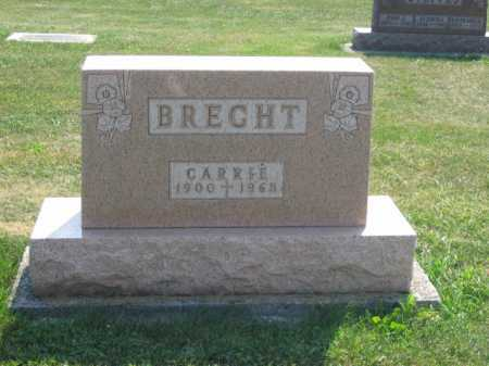 BRECHT, CARRIE - Putnam County, Ohio | CARRIE BRECHT - Ohio Gravestone Photos