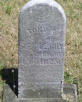 GUY, TONY S. - Putnam County, Ohio | TONY S. GUY - Ohio Gravestone Photos