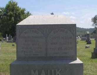 MAUK, DAVID - Putnam County, Ohio | DAVID MAUK - Ohio Gravestone Photos
