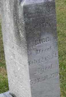 RIGG, JOSEPH - Putnam County, Ohio | JOSEPH RIGG - Ohio Gravestone Photos