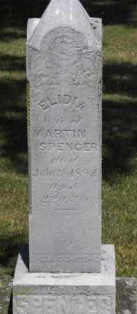 SPENCER, ELIDIA - Putnam County, Ohio | ELIDIA SPENCER - Ohio Gravestone Photos