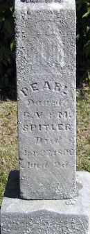 SPITLER, PEARL - Putnam County, Ohio | PEARL SPITLER - Ohio Gravestone Photos