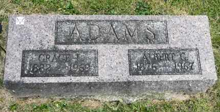 ADAMS, ALBERT G - Richland County, Ohio | ALBERT G ADAMS - Ohio Gravestone Photos