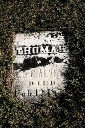 ALVEY, THOMAS - Richland County, Ohio | THOMAS ALVEY - Ohio Gravestone Photos